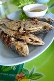 stekt mackerel Fotografering för Bildbyråer