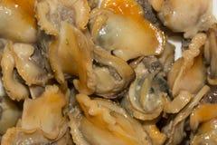 Stekt mussla Arkivfoto