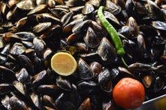 Stekt musslor, citron, peper och tomat royaltyfri foto