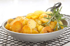Stekt potatis med rosmarin Royaltyfri Bild