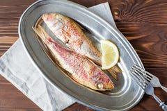 Stekt röd multefiskar på den ovala maträtten royaltyfri fotografi