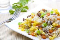 stekt ricegrönsak Arkivbild