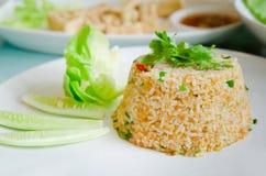 Stekt ris och ny grönsak royaltyfria foton