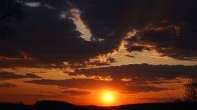 Stekt sol Arkivbilder