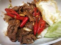 Stekt under omrörning nötköttremsafransyska och kryddig och stekt thailändsk traditionell matstil för ägg royaltyfri bild