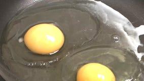 Stekte ägg. arkivfilmer
