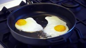 stekte ägg lager videofilmer