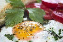Stekte ägg med rostat bröd och tomater royaltyfri fotografi