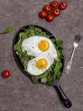 Stekte ägg på pannan med örter och körsbärsröda tomater på brun bakgrund royaltyfri bild
