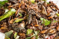 Stekte ätliga kryp blandar med gröna limefruktsidor Arkivbild