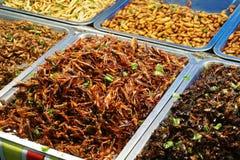Stekte kryp i matmarknad Arkivfoto