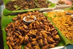 Stekte larver på marknaden Arkivfoto