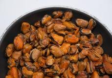 stekte musslor Fotografering för Bildbyråer
