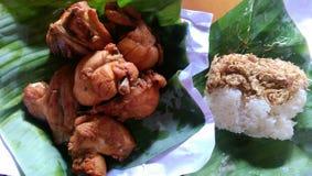 Stekte och klibbiga ris för höna med den stekte löken Royaltyfri Bild