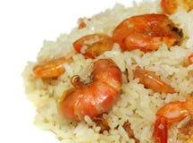 Stekte ris med räka Arkivbild