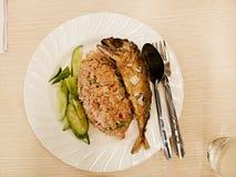 Stekte ris med scomberen Royaltyfri Bild