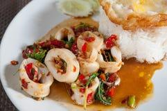 Stekte ris med tioarmade bläckfisken och stekt ägg Royaltyfri Bild