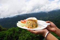 Stekte ris på berget Arkivfoto