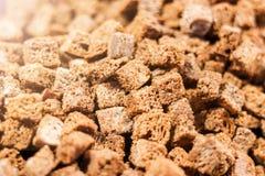 Stekte rostat bröd eller krutonger från rågbröd arkivfoton
