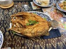 Stekte snapper med fisks?s, royaltyfri fotografi