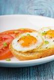 Stekte vaktelägg med ett rostat bröd och tomater som beströs med nya salladslökar Royaltyfri Bild