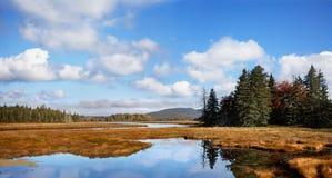 Stel het Panorama van de Beek op Stock Afbeeldingen