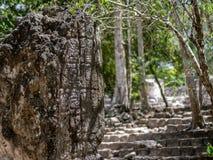 Stela maya dans la jungle mexicaine avec l'écriture hiéroglyphique dans C images libres de droits