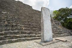 Stelae Майя на Calakmul Мексике стоковое изображение