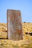 stelae montre alban Стоковая Фотография