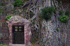 Stele und Bantambaum Stockfotografie