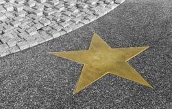 Stella bronzea sul pavimento del granito in bianco e nero fotografie stock