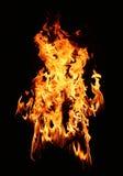 Stella del fuoco Fotografia Stock Libera da Diritti