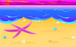 Stella di mare e seashells sul litorale Immagini Stock Libere da Diritti