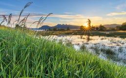 Stella di Sun che alza sopra la montagna con erba Immagini Stock Libere da Diritti