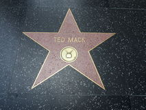 Stella di Ted Mack a hollywood Immagini Stock