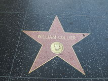 Stella di William Collier a hollywood Fotografia Stock