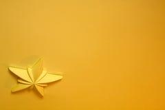 Stella gialla fotografie stock libere da diritti