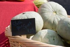 Stella squash i en korg på bönderna marknadsför med tecknet Royaltyfri Fotografi