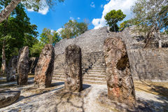 Stellae and Pyramid in Calakmul, Mexico. Stellae at the base of structure seven pyramid in the Mayan ruins of Calakmul, Mexico royalty free stock images