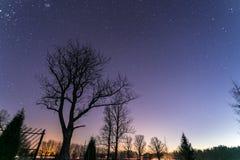 Stelle alla notte con l'albero e la strada fotografie stock