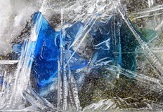Stelle congelate Immagini Stock