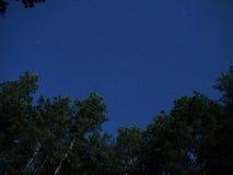 Stelle del cielo notturno Immagine Stock Libera da Diritti