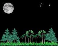 Stelle ed alberi della luna Fotografie Stock Libere da Diritti