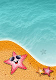 Stelle marine al sole sulla spiaggia Fotografie Stock Libere da Diritti