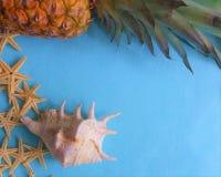Stelle marine bianche con l'ananas fotografia stock libera da diritti