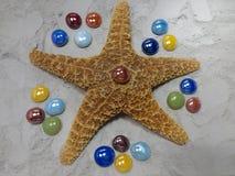 Stelle marine con le perle di vetro Fotografie Stock