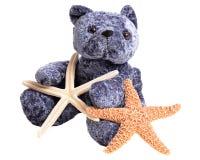 Stelle marine della tenuta dell'orso del giocattolo Immagine Stock