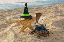 Stelle marine di Halloween con il cappello della strega Fotografia Stock