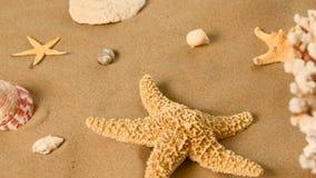 Stelle marine e coperture sulla sabbia, rotazione, primo piano stock footage