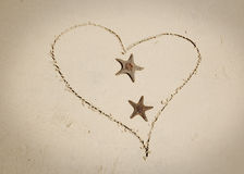 Stelle marine nell'amore Immagine Stock